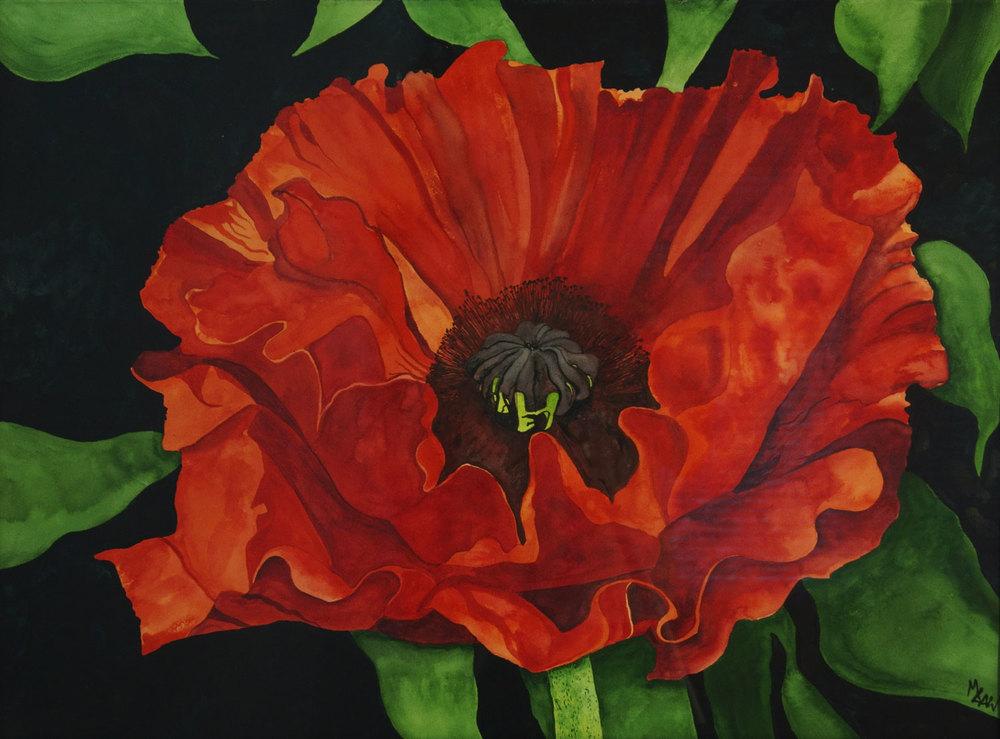 Poppy - Sold