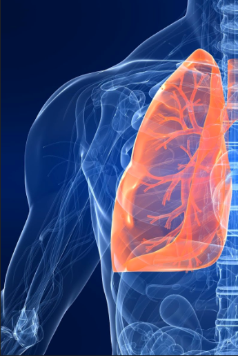 Lungs are like Evaporator Coils