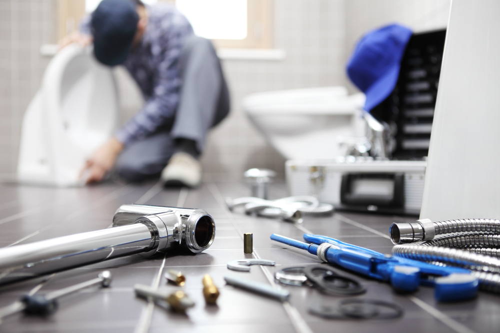 Master Plumber , plumbing repair