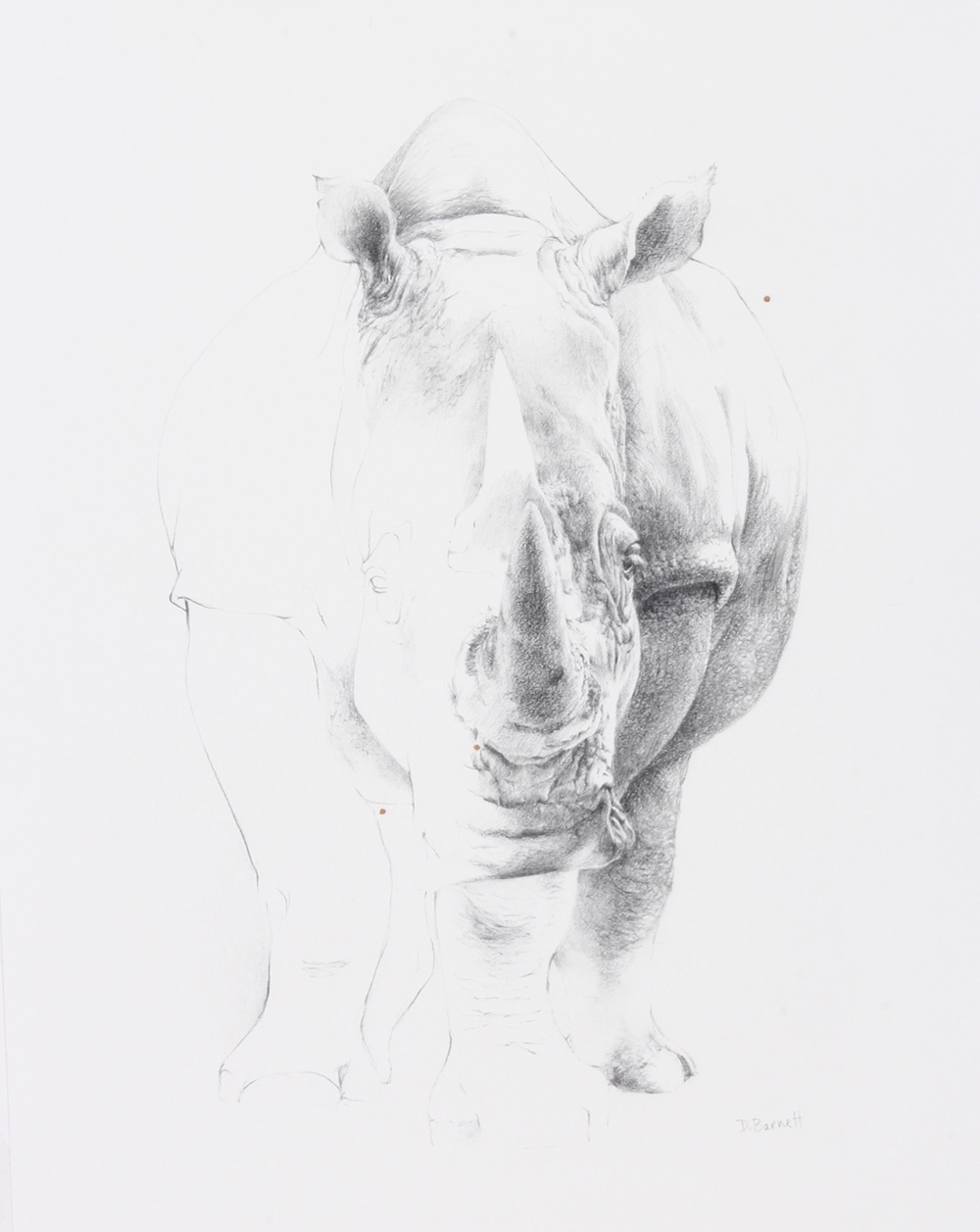 Dona Barnett – Don't Forget The Rhino - $450