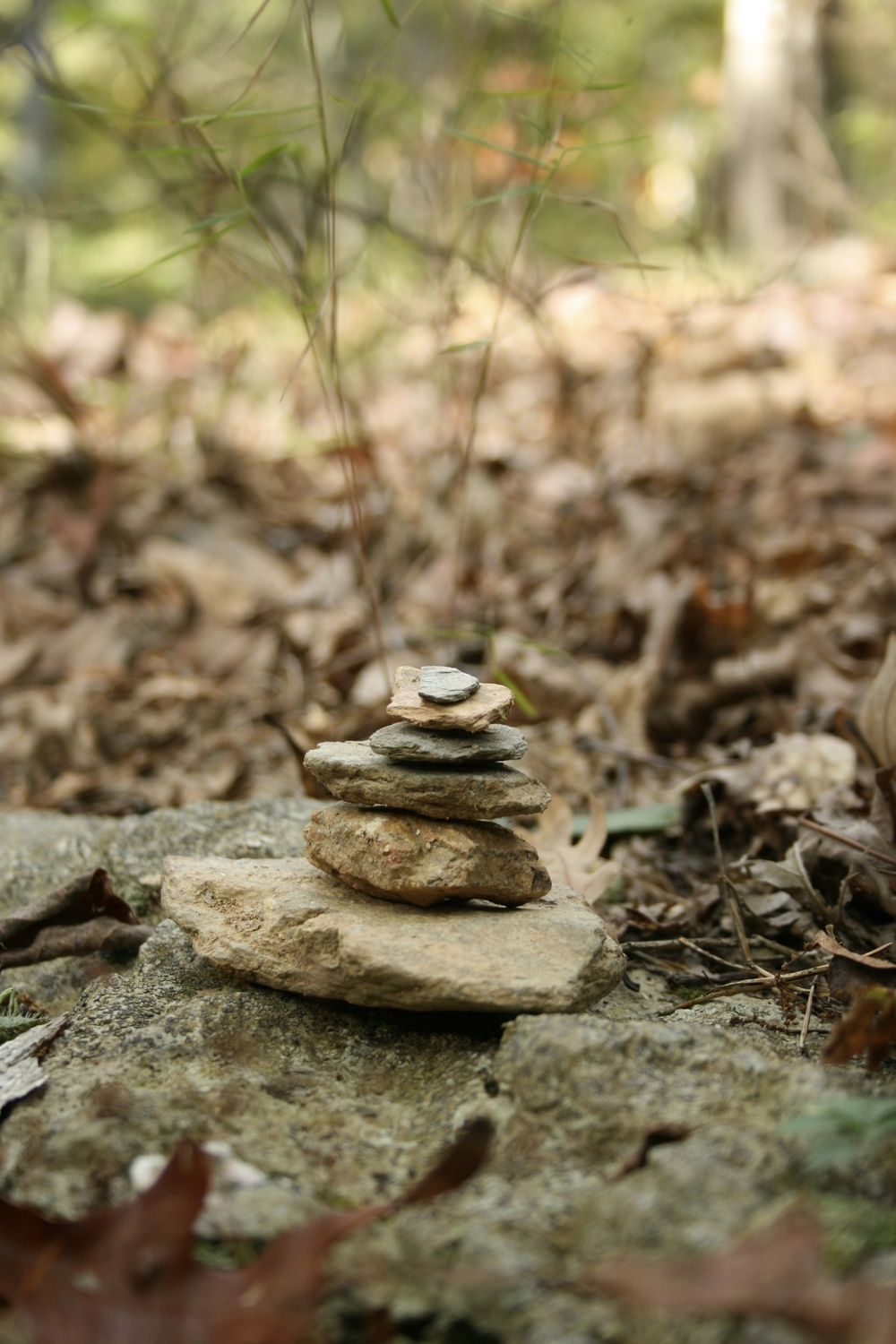 A rock cairn I spotted at Yogaville a few years ago; balance and equanimity incarnate!