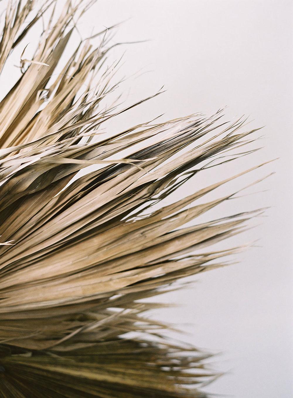 Hawthorn Flower Studio with Meghan Mehan Photography (18).jpg