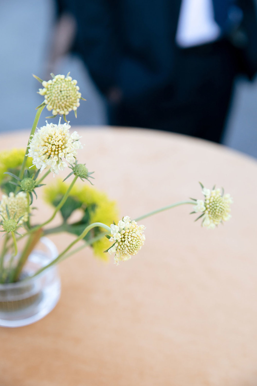 Hawthorn Flower Studio with Jenn Emerling Photography (3).jpg