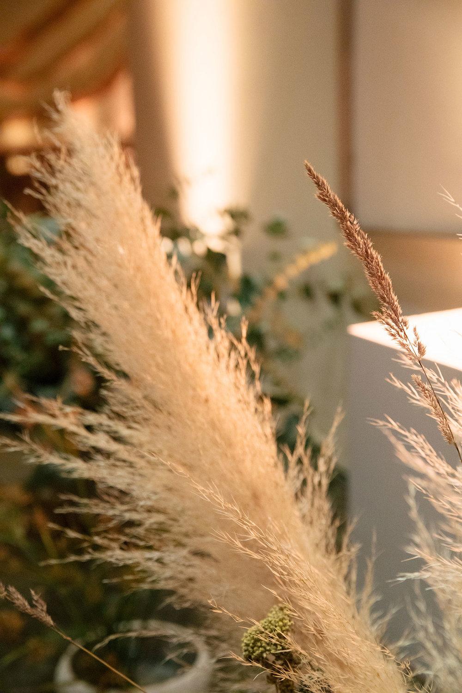 Hawthorn Flower Studio with Jenn Emerling Photography (10).jpg