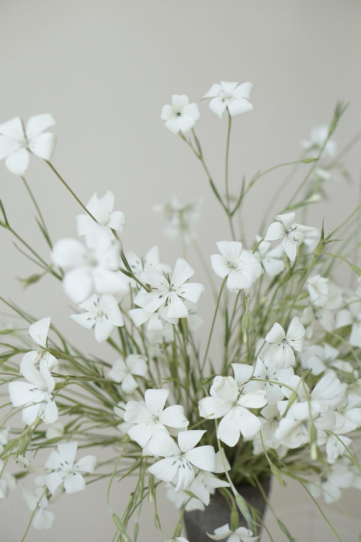 Hawthorn Flower Studio (253).JPG