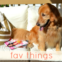my fav things.jpg