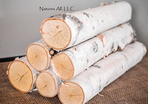 11. White Birch Logs