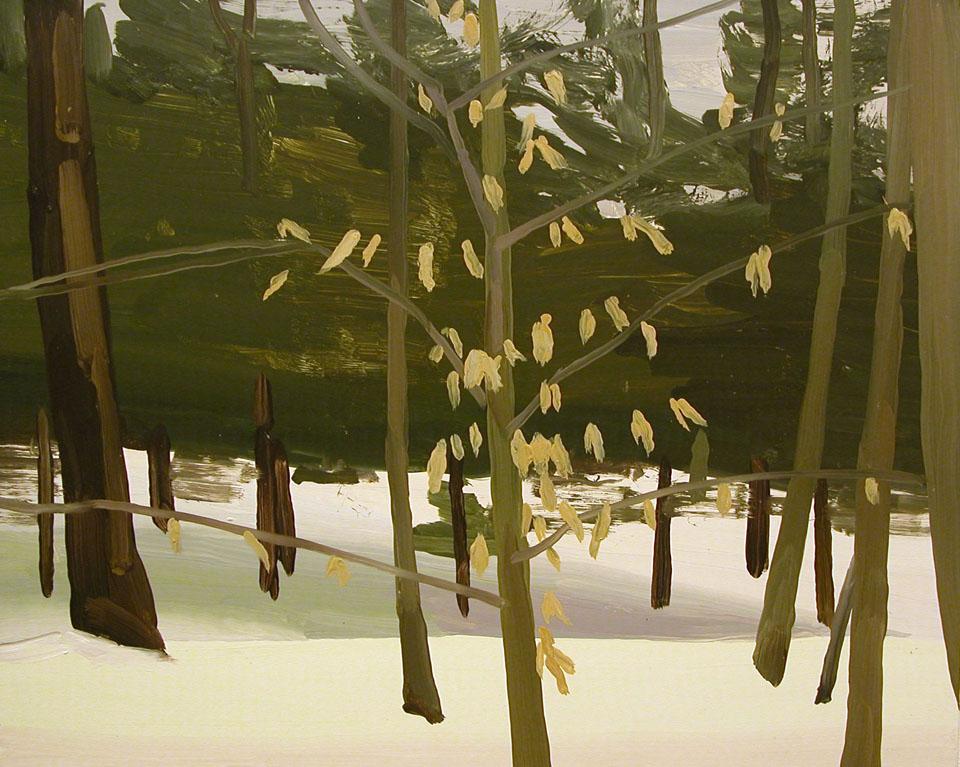 SnowPineTrees[1].jpg