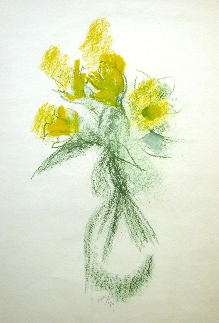 LM547_Daffodils.jpg