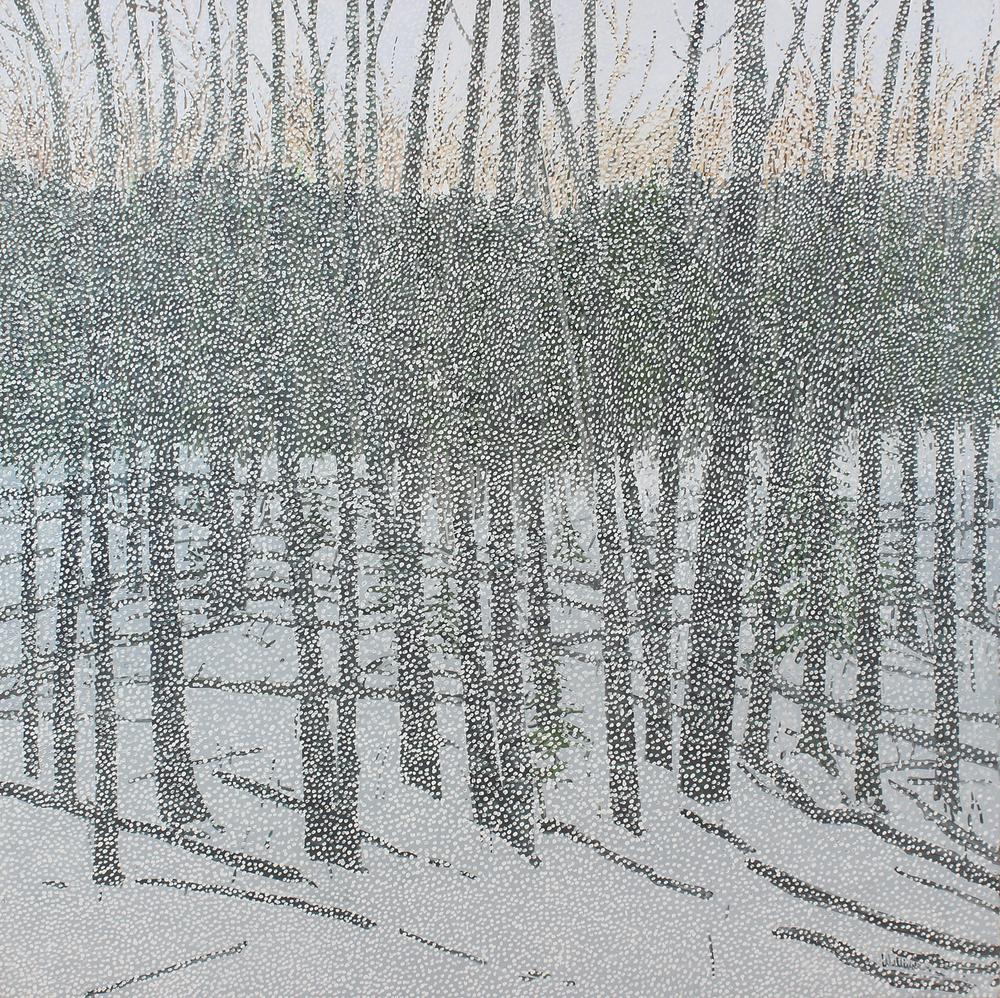 Last Sun and Snow
