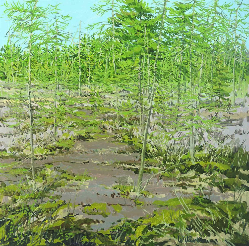 Study for Little Marsh Spring