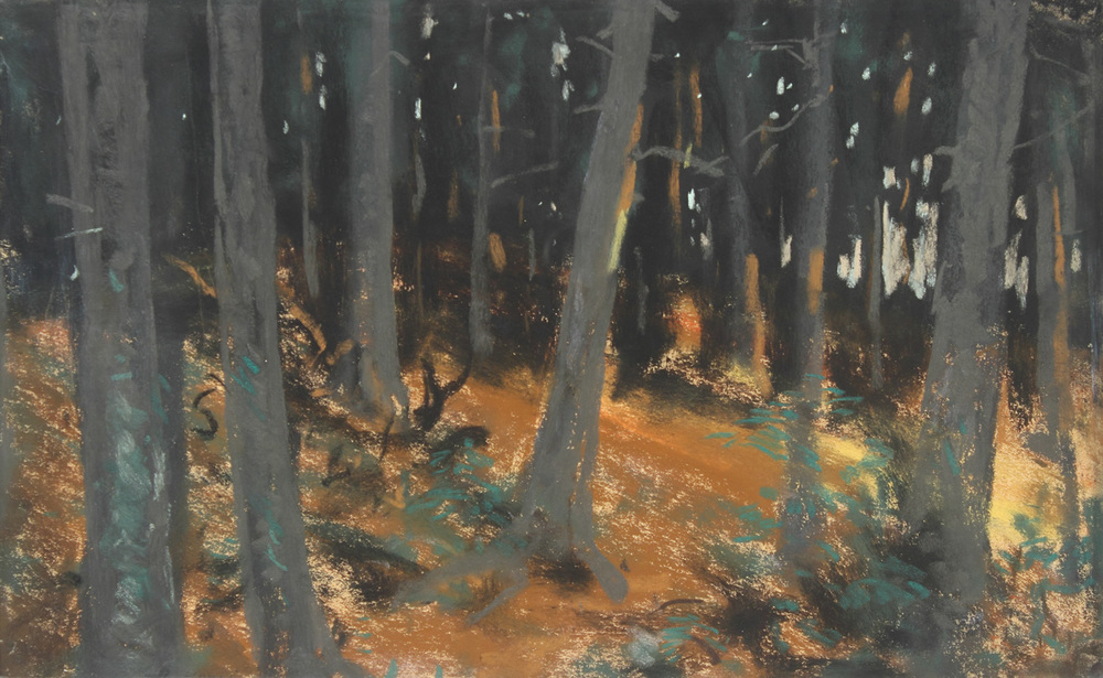 The Woods at Sunset