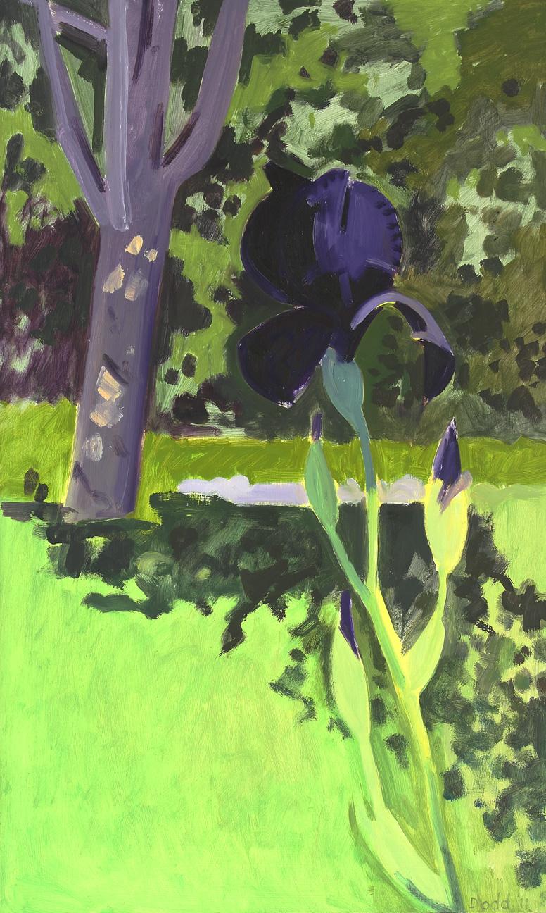 Iris + Tree