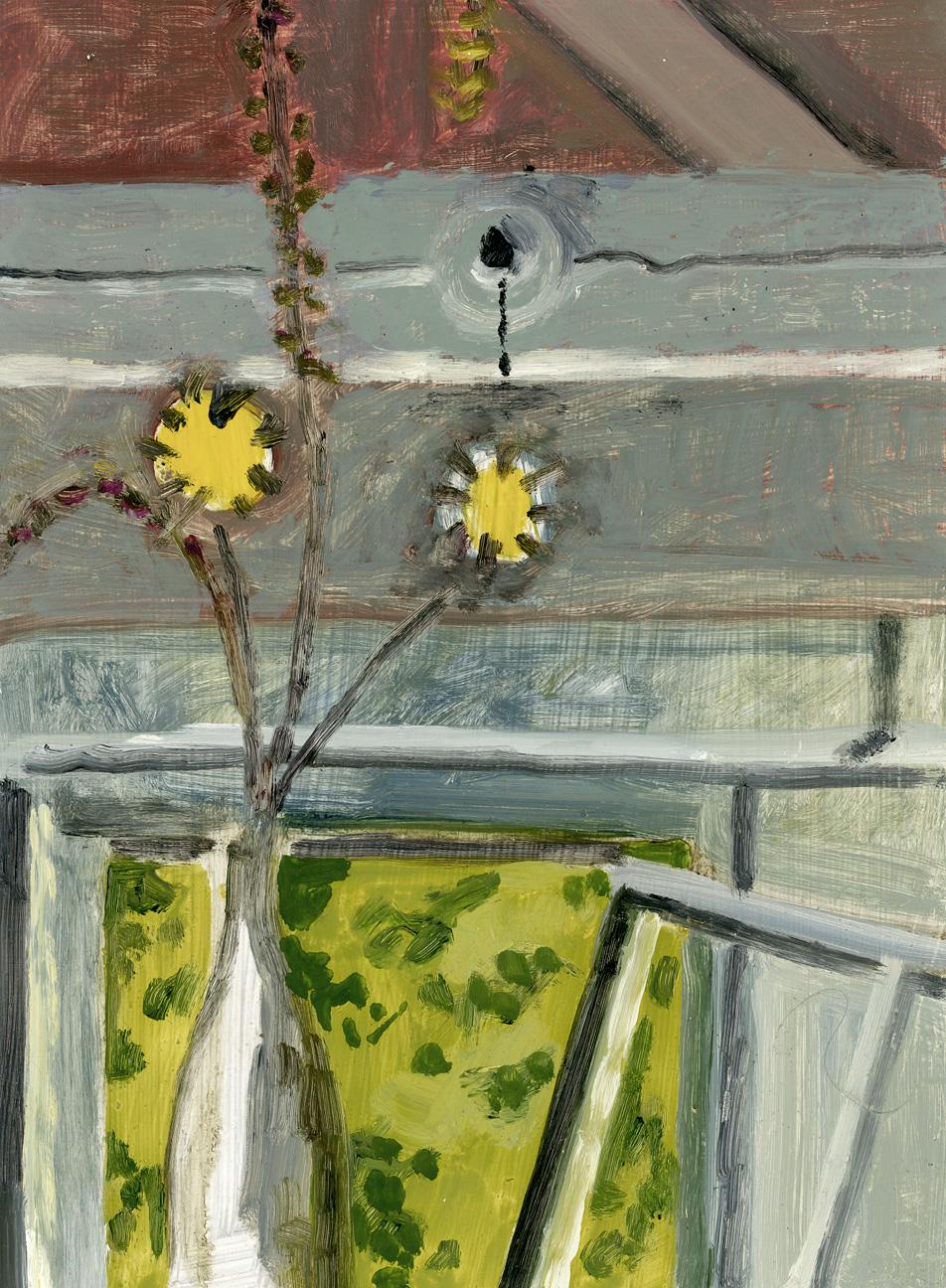 Yellow Flowers + Barn Window
