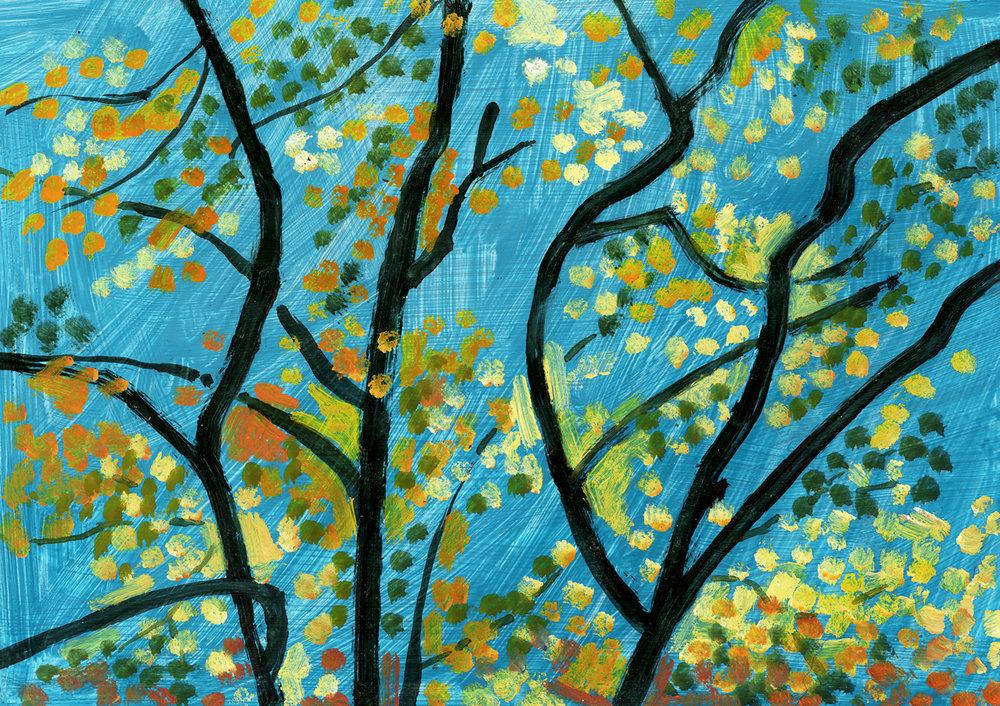 Elm Tree, October