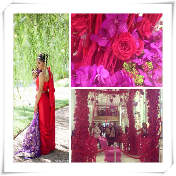 Inspired by #Macys #Flower Show. Our #Tetris inspired #bridal #sari would look perfect under the pergola