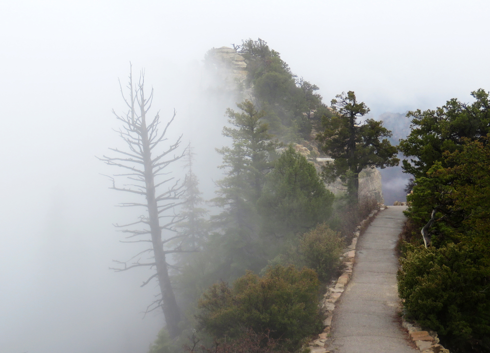 The trail to Bright Angel Point.