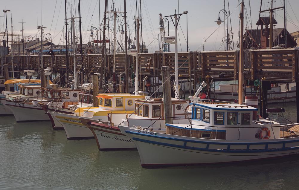 boats-in-a-marina-san-francisco-patrick-sanders.jpg