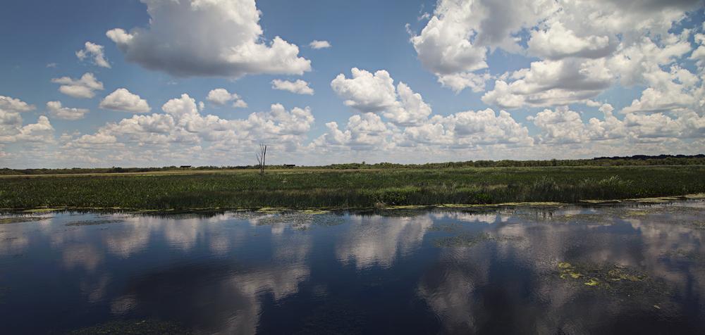 sweetwater-branch-sheet-flow-gainesville-paynes-prairie-patrick-sanders-7.jpg