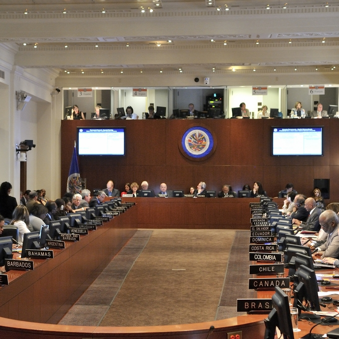 OAS Council of State