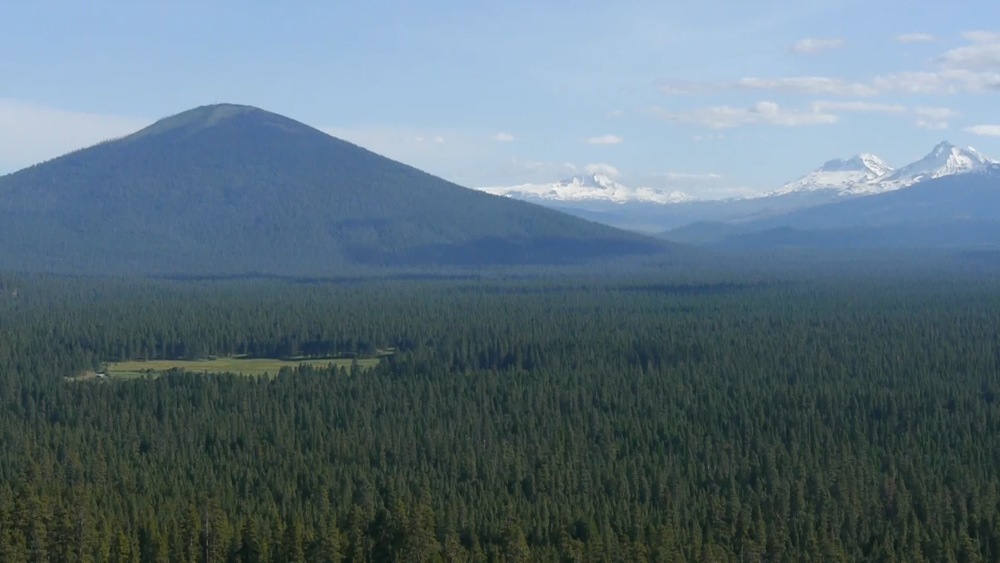 View of Black Butte with the meadow of House on Metolius as a sliver of light green in the sea of Ponderosa pine.  The North, Middle and South Sister are visible on the horizon.  Photo by Marta Van Patten.