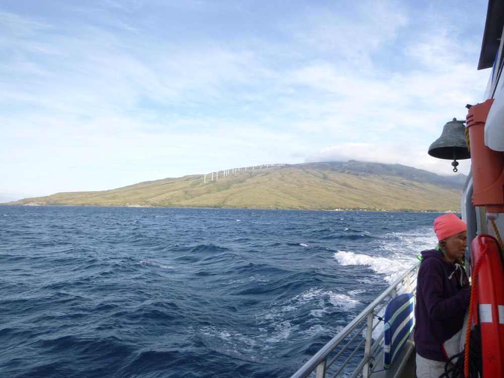 Boat trip out to Molokini.