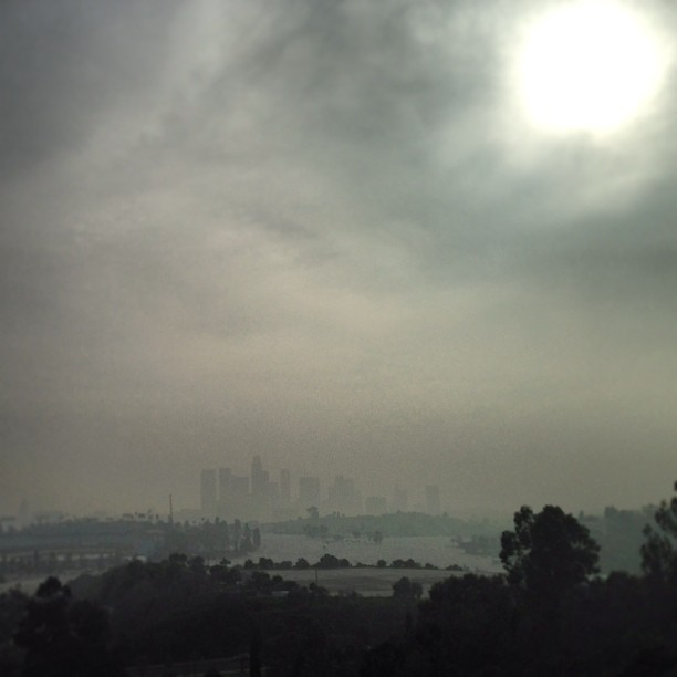 Los Angeles on a hazy day #la #downtown #losangeles #haze #elysian