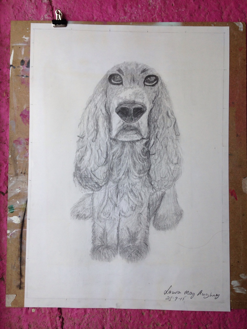 Dog portrait. By Laura Mae. Aged 12 Pencil on paper