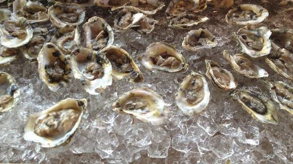 Oysters make me happy — if they make you squirm, substitute something you like to make the analogy work.