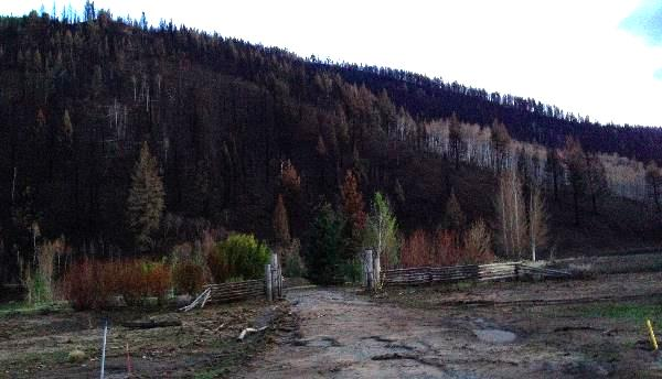 I took the picture above showing what's left of the entrance to a home in Greenhorn Gulch, Idaho.