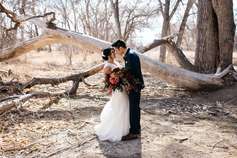 Micah & Justine - Colorado Wedding