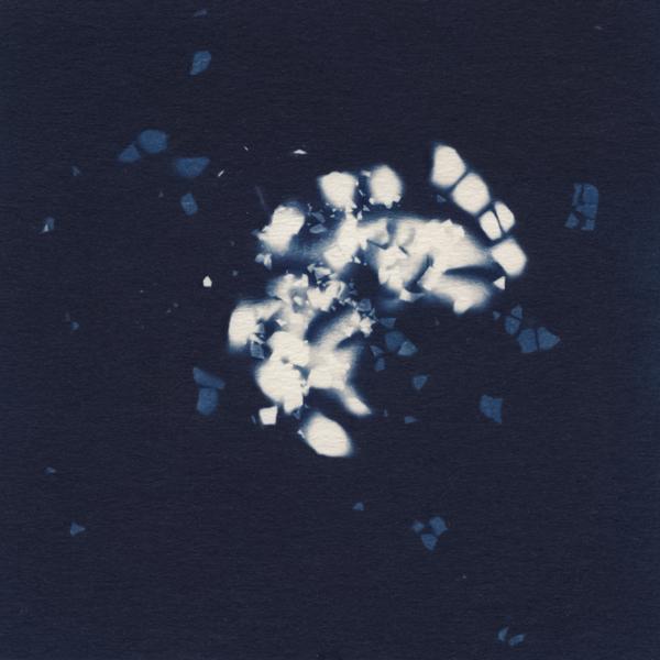 cyanotypeknm.jpg