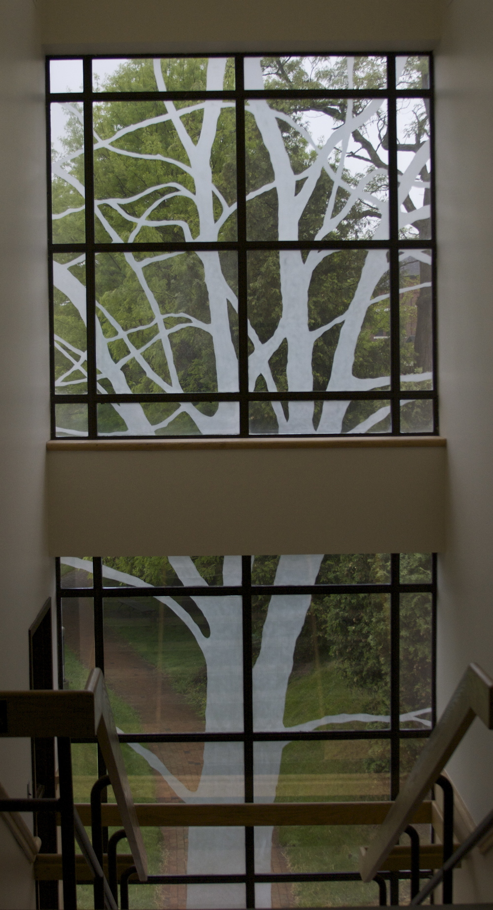 Tree, 30'x8' Etched Glass 2011 Brattleboro Court House, Brattleboro, VT