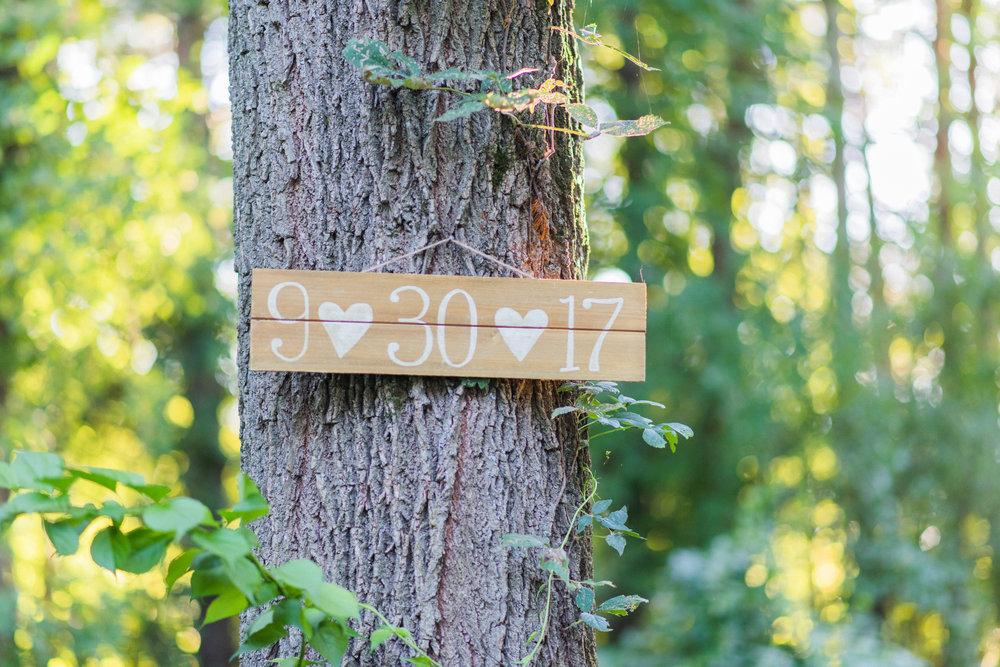 Birch-2.jpg