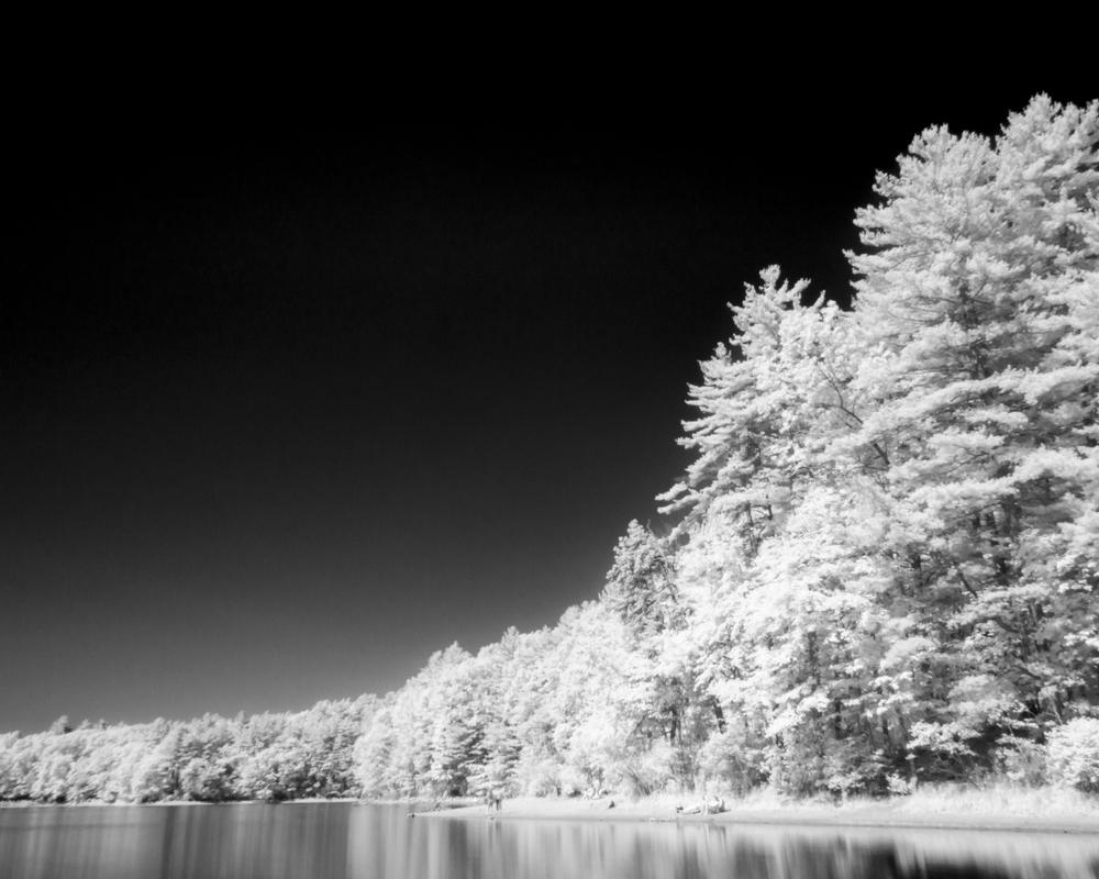 Concord Infrared - JPG-3.jpg