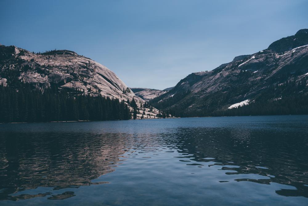 Yosemite Scouting-77.jpg