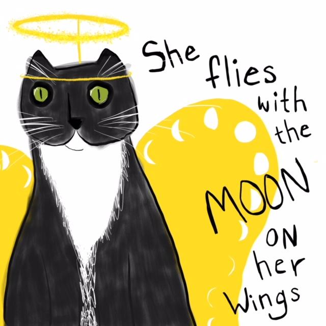 CAT__MITTS_WINGS.jpg
