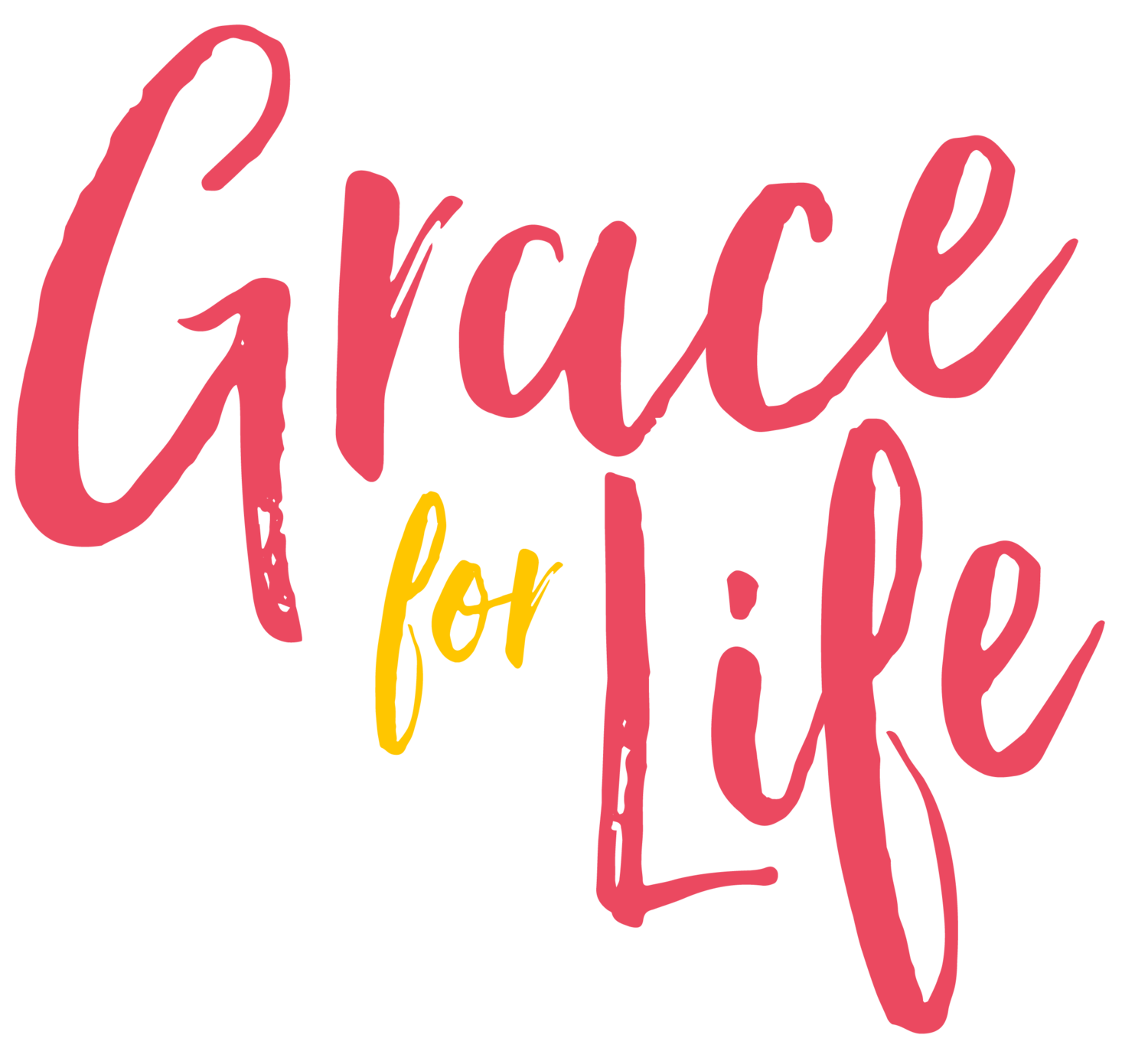 Grace For Life