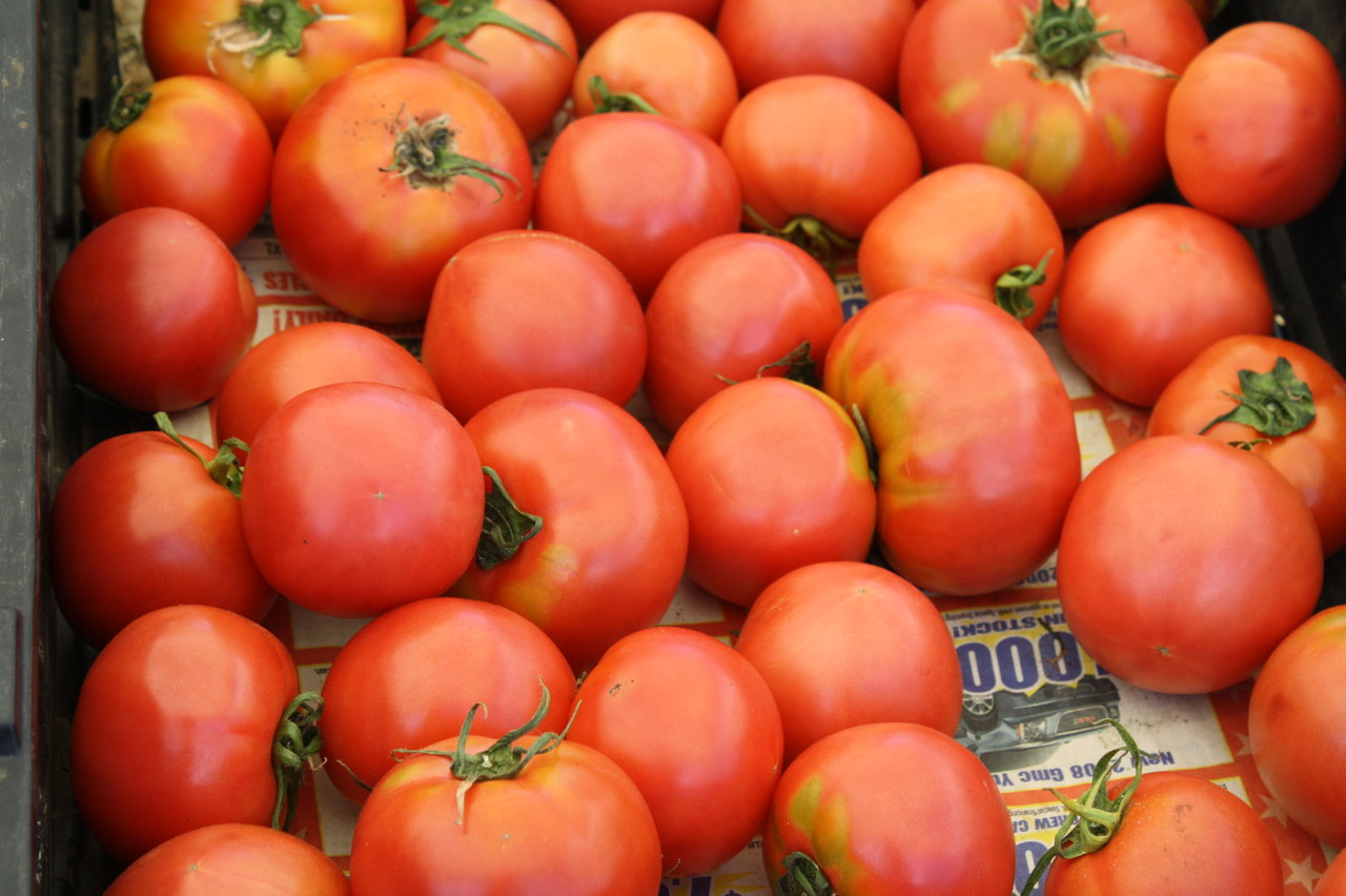 Ripe, juicy tomatoes at the Venice Farmer's market
