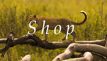 shop-.jpg