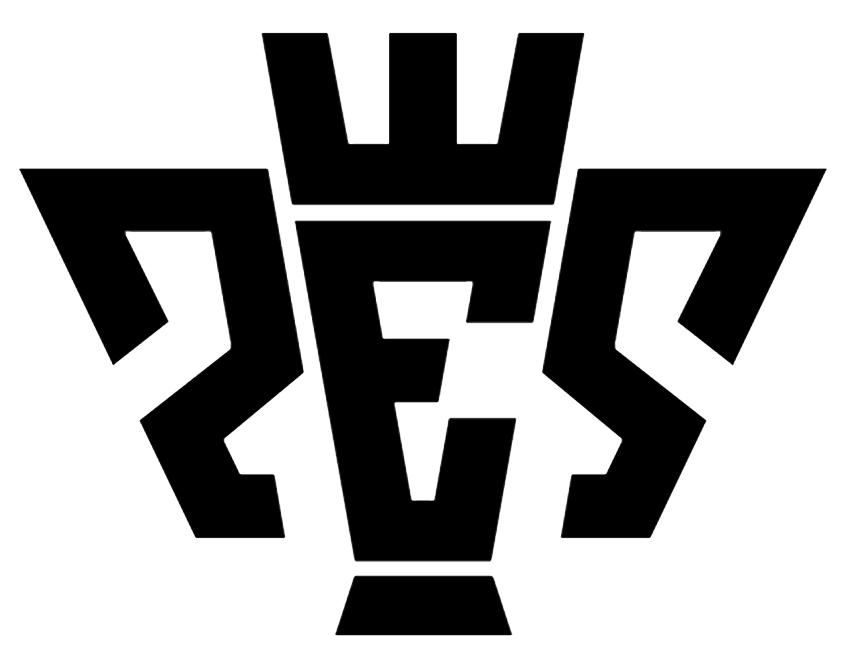 PES-2 _900.jpg