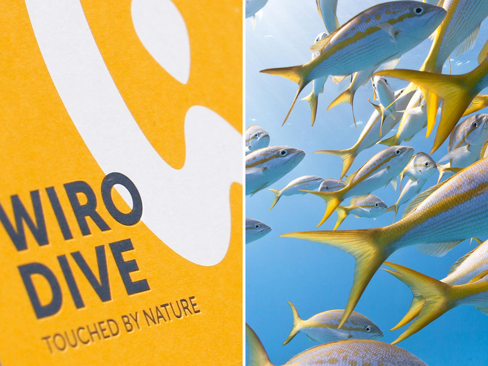 Corporate Design  Wiro Dive (Tauchreisen)