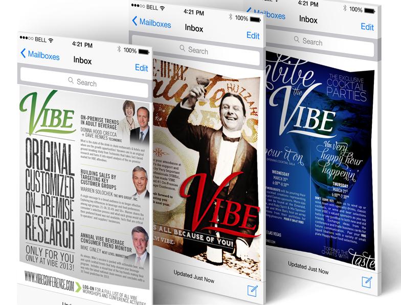 vibe_2013_jp_02.jpg