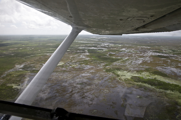 NW Lake Okeechobee Overflow. Aerial flight made possible by  Lighthawk.org   ©Connie Bransilver
