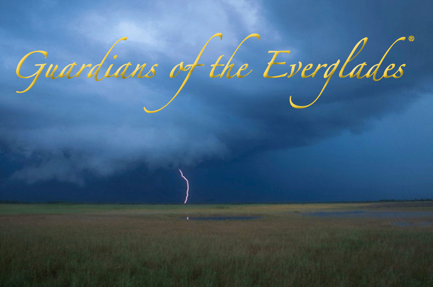 Guardians of the Everglades®