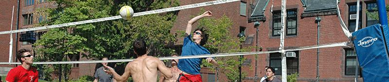 sa-volleyball.png
