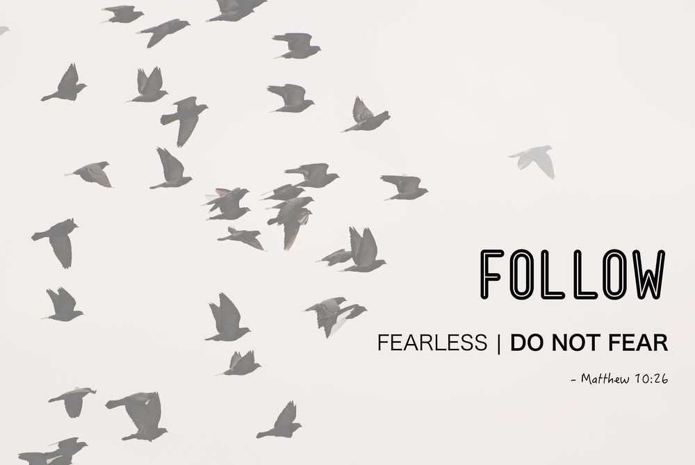 FollowSeries_Fearless