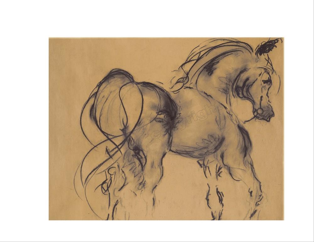 Horse Study #7