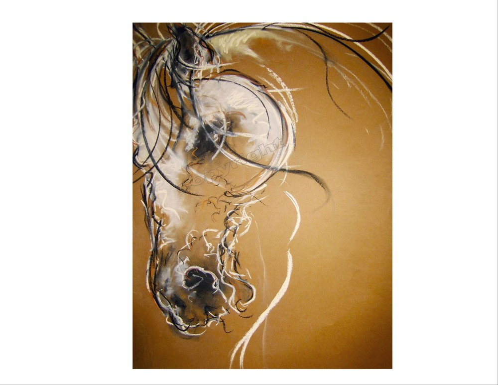 Horse Head Study #23