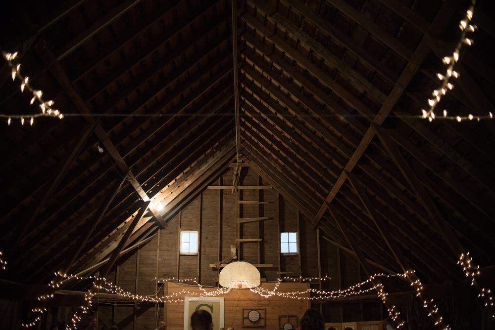 strehle_wedding-452.jpg